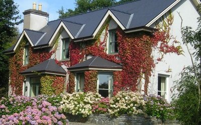 A welcoming Irish home with a lavish garden